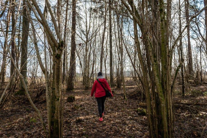 红色礼服的少妇享受与照片照相机的自然 库存照片
