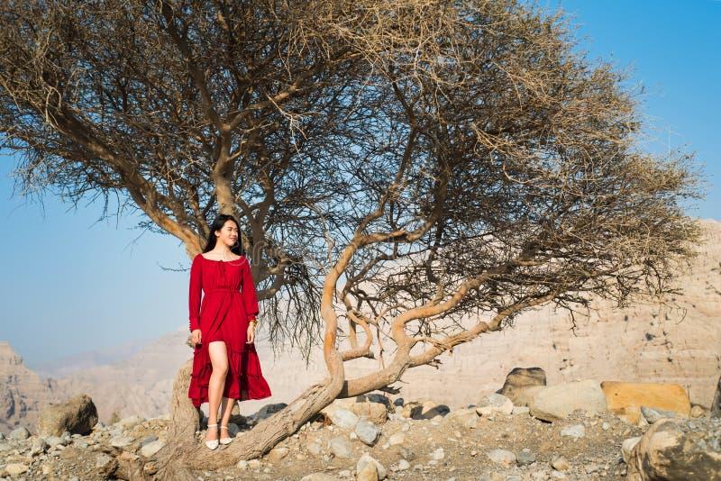红色礼服轰鸣声沙漠树的美丽的女孩 免版税图库摄影