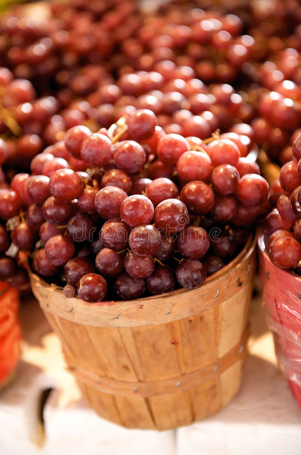 红色篮子的葡萄 库存照片