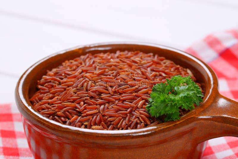 红色米平底深锅  库存照片