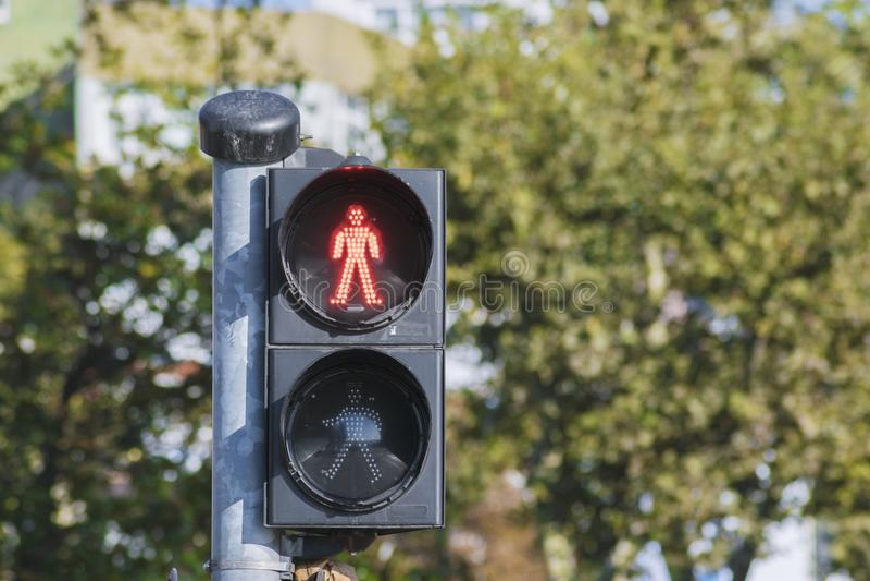 红色红绿灯 库存照片
