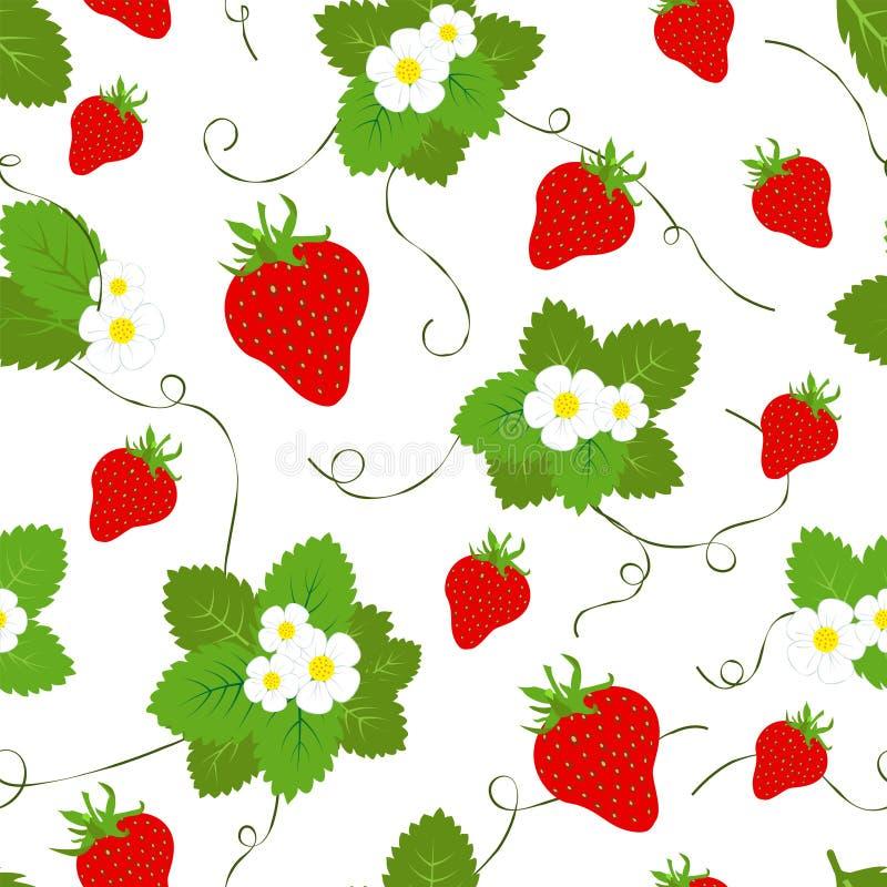 红色经典草莓季节果子纹理 抽象模式无缝的向量 向量例证