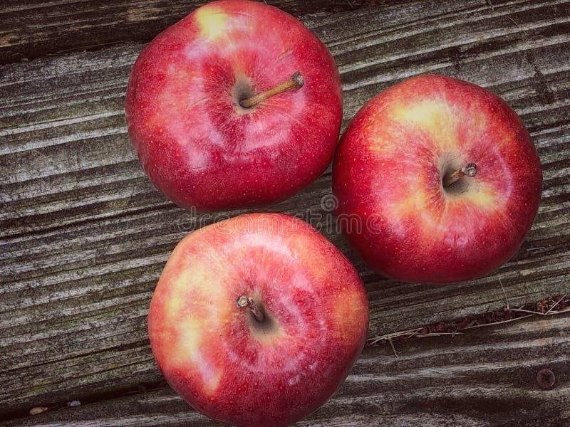 红色美味苹果 免版税库存照片