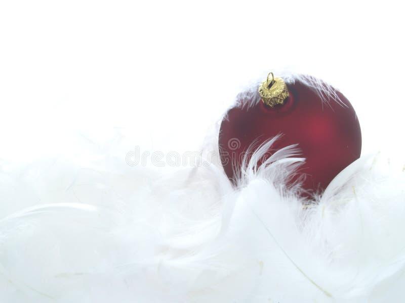 红色羽毛的装饰品 库存照片