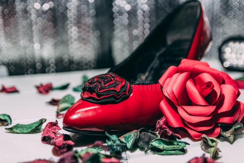 红色脚跟和红色玫瑰在白色和灰色背景 库存图片