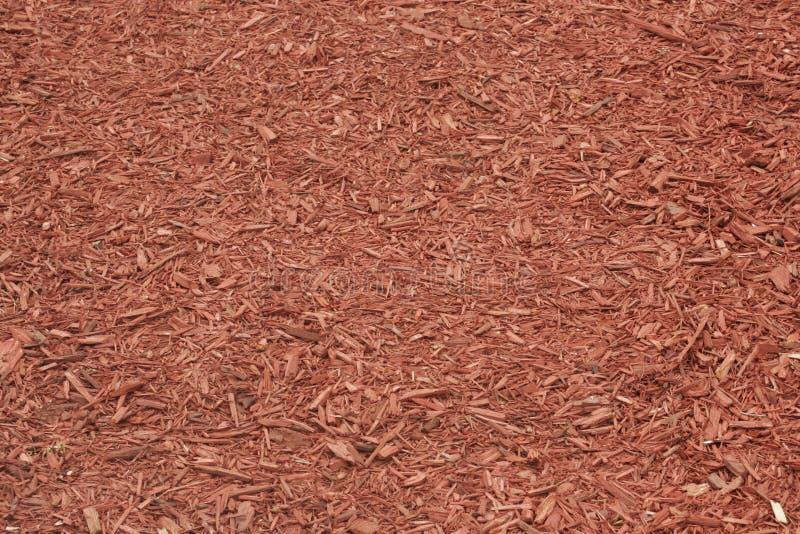 红色腐土报道了种植的地面 免版税库存图片