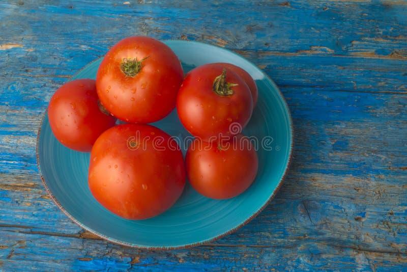 红色自然蕃茄有机耕田 图库摄影