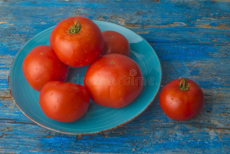 红色自然蕃茄有机耕田 免版税库存照片