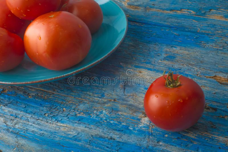 红色自然蕃茄有机耕田 免版税库存图片