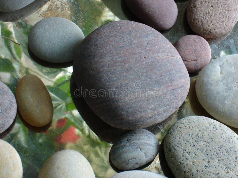 红色花反射能看在光滑的岩石下 免版税库存照片
