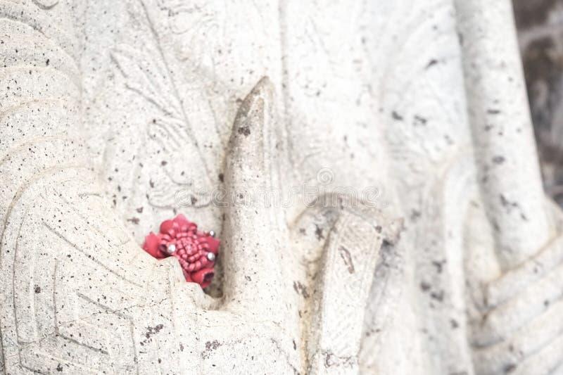红色花在慈悲的手上 免版税库存图片