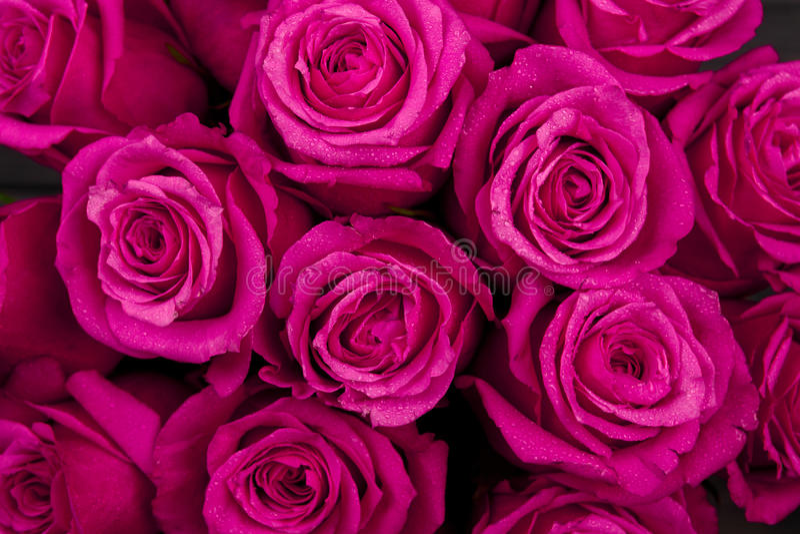 红色花束上色了与水下落的玫瑰色花在瓣特写镜头作为背景.