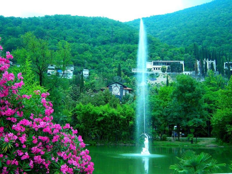 红色花湖喷泉在山下的一个绿色公园 库存照片