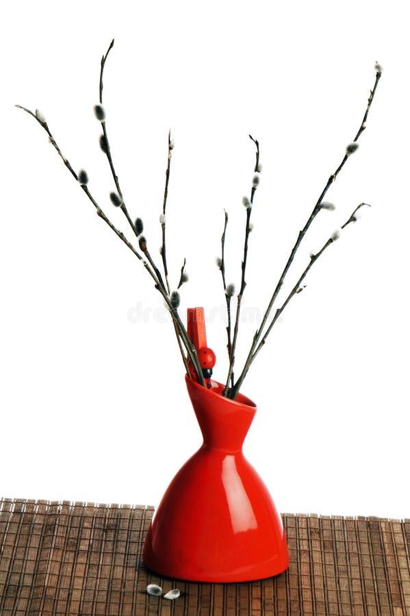 红色花瓶杨柳 图库摄影