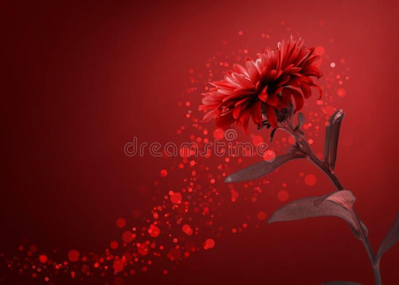 Download 红色花背景 库存图片. 图片 包括有 beauvoir, 季节性, 详细资料, 植物群, 图象, 关闭, 红色 - 59106623