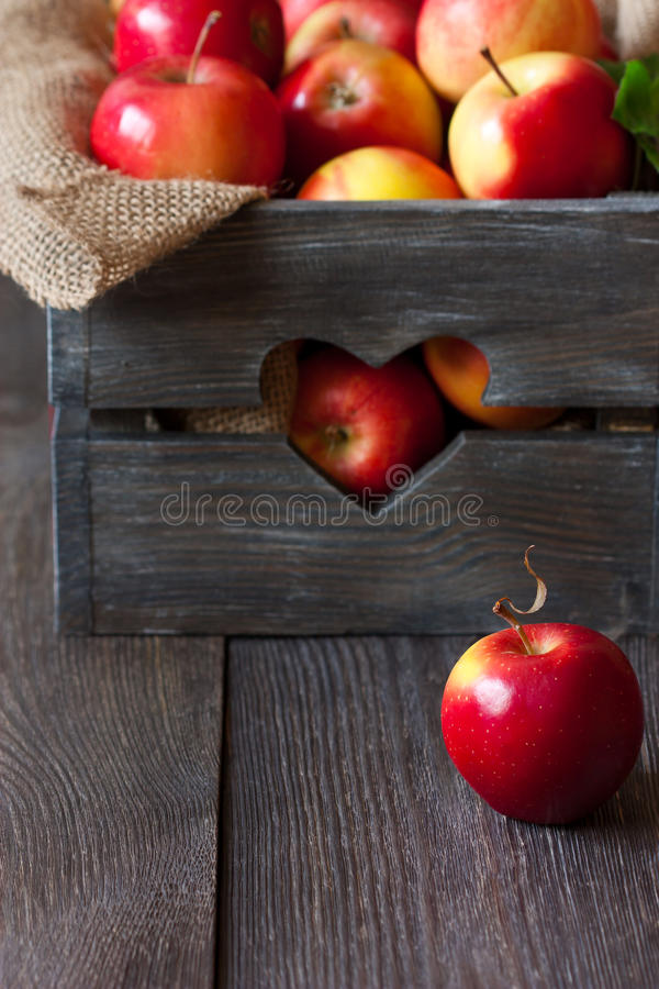 红色苹果。 图库摄影