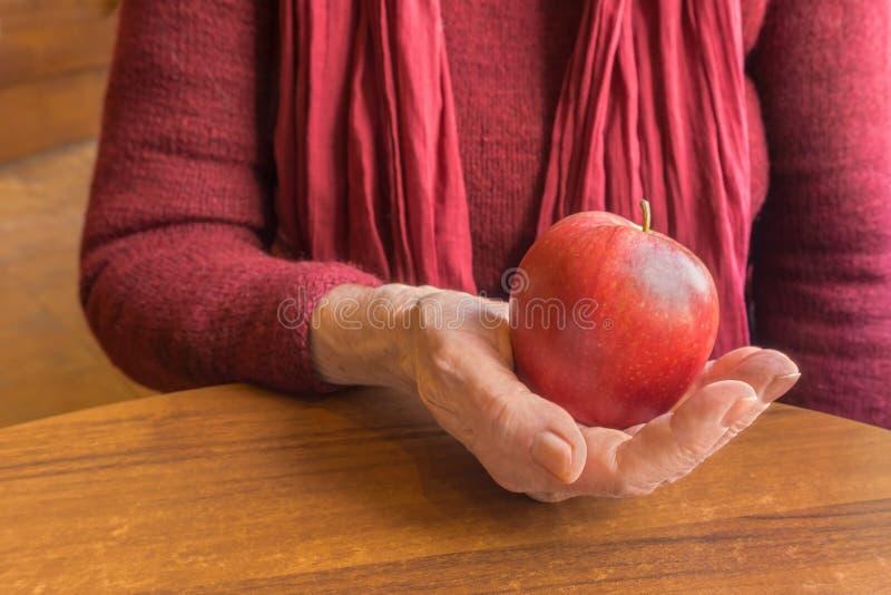 红色苹果在年长妇女的老手上红色的,关闭 免版税库存图片
