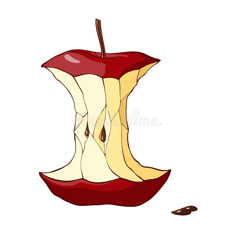 红色苹果核心 向量例证