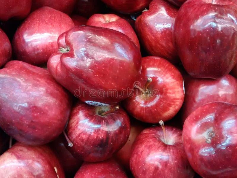 红色苹果背景 免版税库存图片