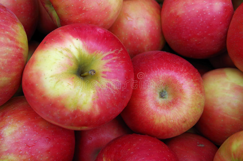 红色苹果视图从上面 免版税库存图片