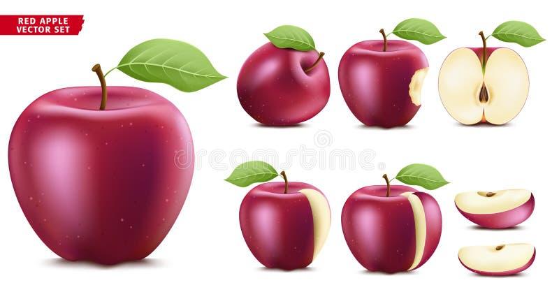 红色苹果计算机果子成熟现实3D食物传染媒介集合 整个一半和被切的版本 向量例证