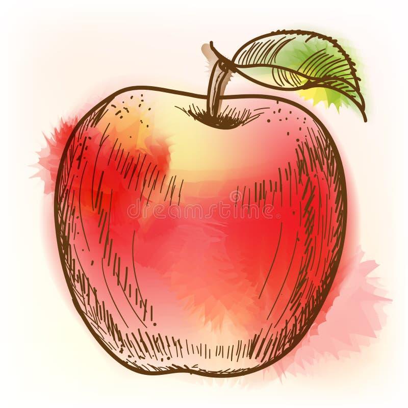 红色苹果,水彩绘画 皇族释放例证