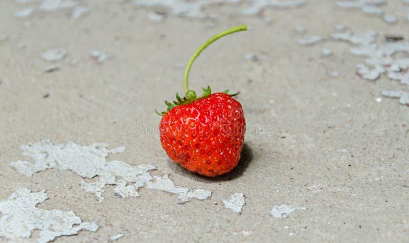 红色草莓果子,葡萄酒背景,绿色植物关闭 库存照片