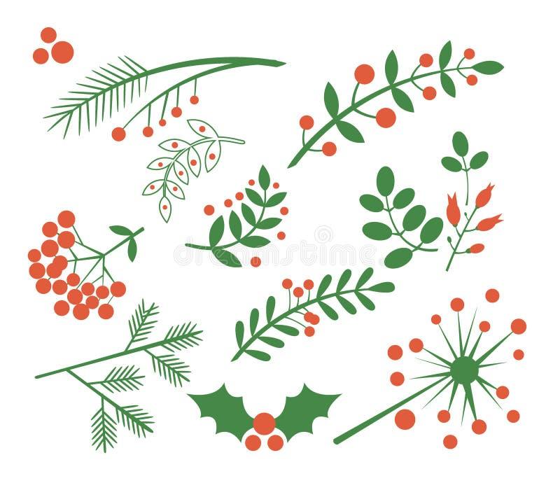 红色莓果、冷杉和叶子 也corel凹道例证向量 向量例证