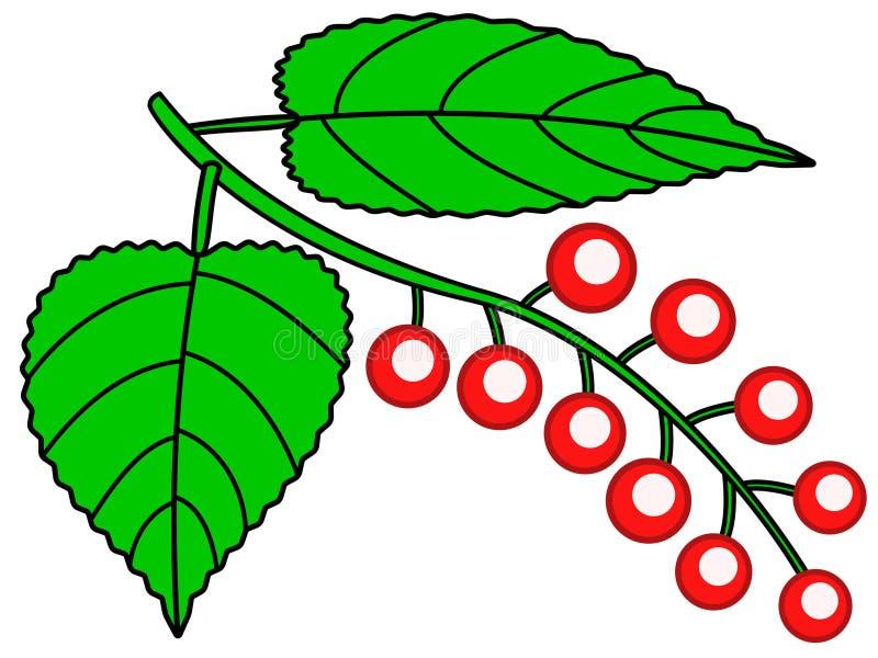 红色莓果象 向量例证