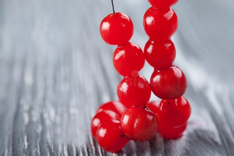 红色莓果项链 荚莲属的植物莓果小珠,花冠 免版税库存照片