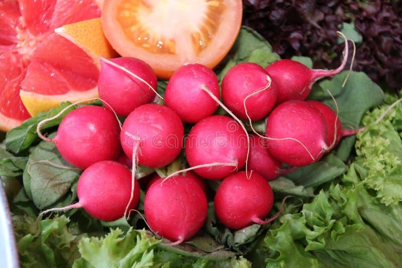 红色萝卜在绿色salade床上服务  库存照片