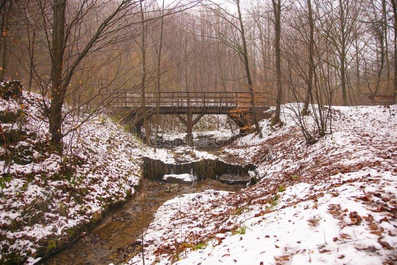 红色落叶,在河的桥梁,冬天风景 库存图片