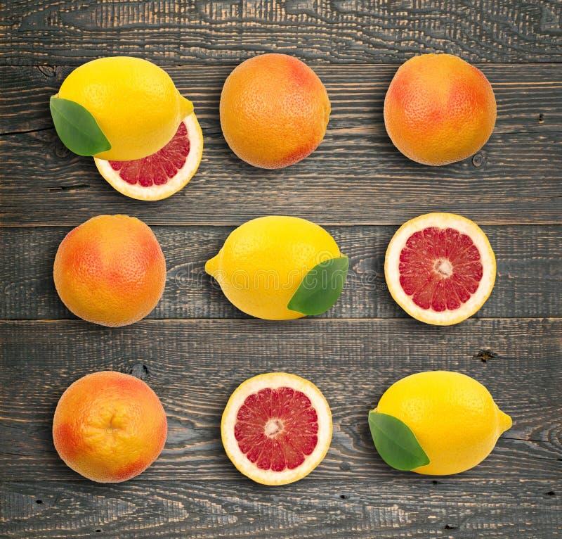 红色葡萄柚或橙色样式 皇族释放例证