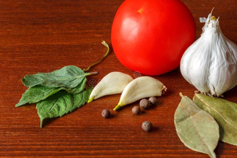 红色蕃茄和大蒜用香料在桌上 免版税图库摄影
