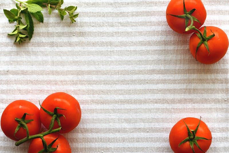 红色蕃茄和牛至明亮的镶边纺织品表面上 免版税库存图片