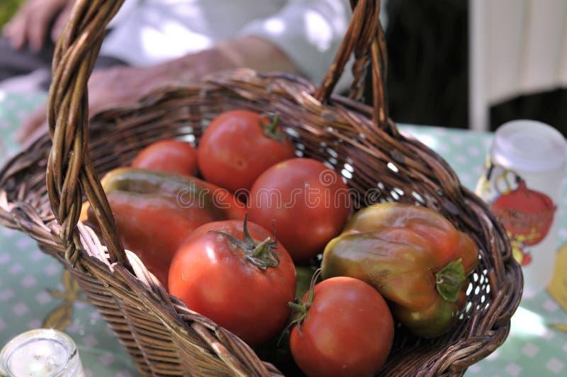 红色蕃茄和piments在篮子 免版税库存照片