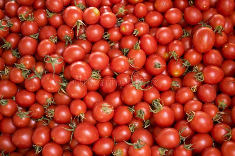 红色蕃茄在农夫市场上 库存图片