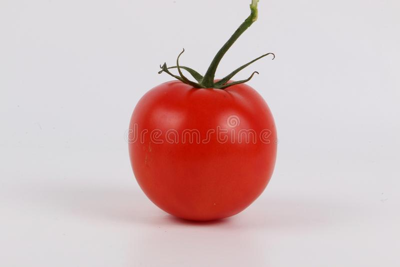红色蕃茄在演播室 免版税库存图片