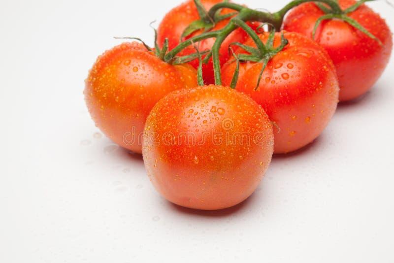 红色蕃茄,与表示生气勃勃和健康水的滴  免版税库存照片