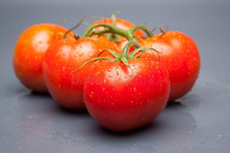 红色蕃茄,与表示生气勃勃和健康水的滴  免版税库存图片