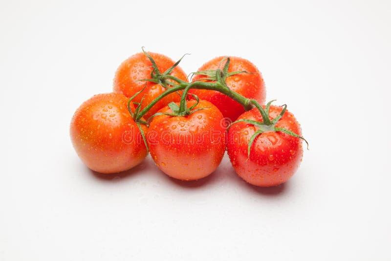 红色蕃茄,与表示生气勃勃和健康水的滴  免版税图库摄影