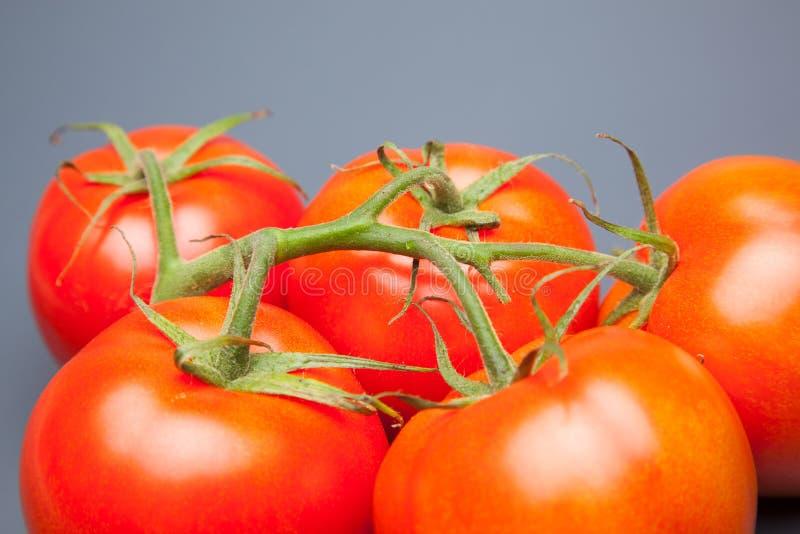 红色蕃茄,与表示生气勃勃和健康水的滴  图库摄影