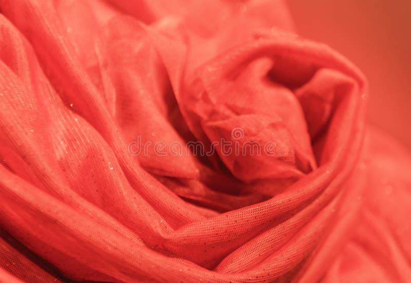 红色薄纱上升了背景 库存图片