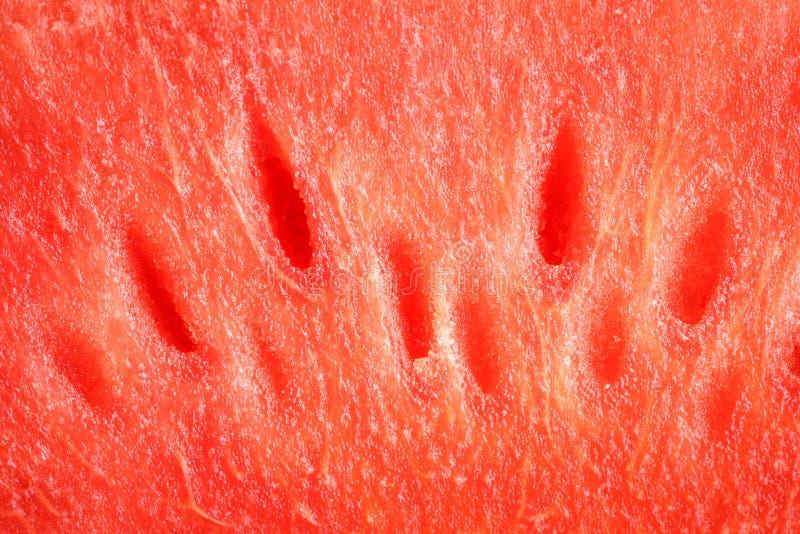 红色西瓜纹理 库存照片