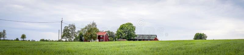 红色谷仓在乡下的瑞典 免版税库存图片