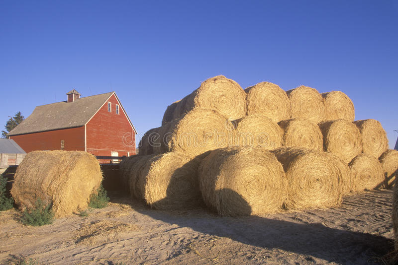 红色谷仓和干草堆ID秋天的 库存图片