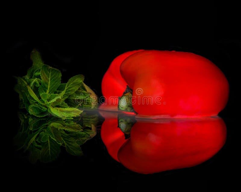 红色辣椒的果实反射创造整体 免版税库存图片