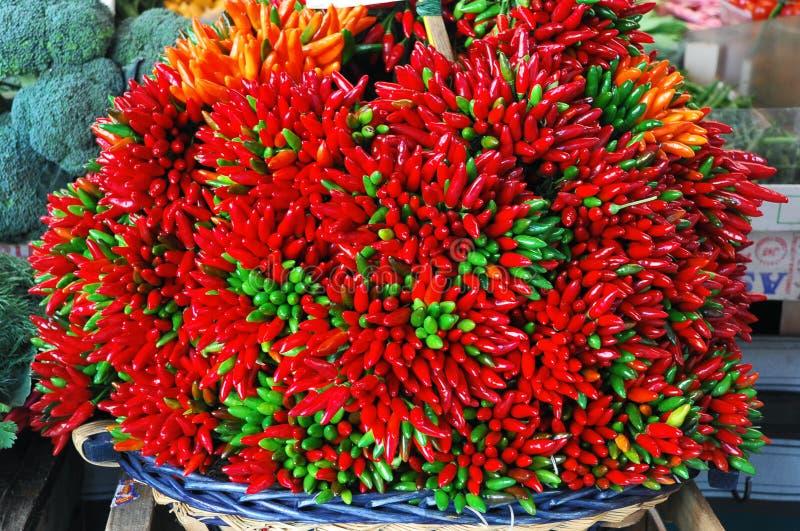 红色辣椒绿色的辣椒 免版税库存照片
