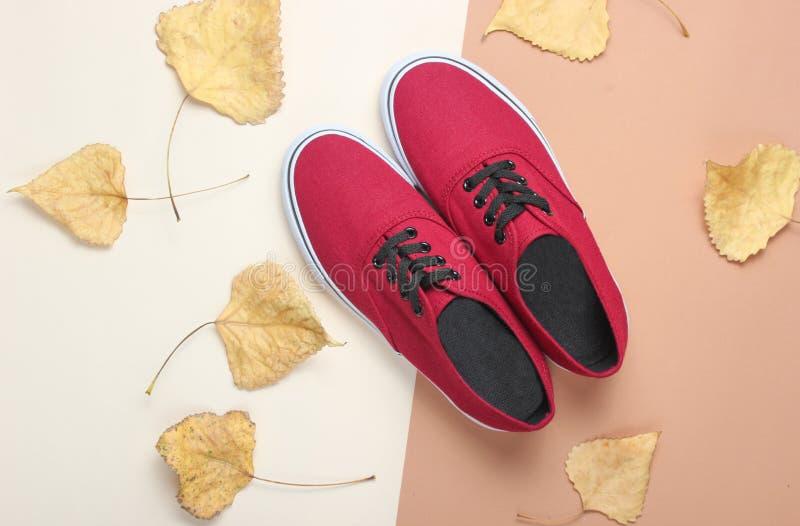红色运动鞋和下落的秋叶在米黄纸背景 秋天汇集,时兴的women& x27;s鞋子 顶视图 库存图片