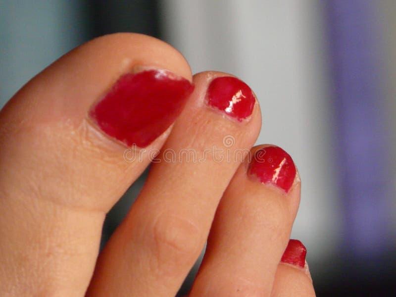 红色钉子脚趾 图库摄影